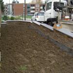 die Umgestaltung des Vorgartens nimmt Formen an